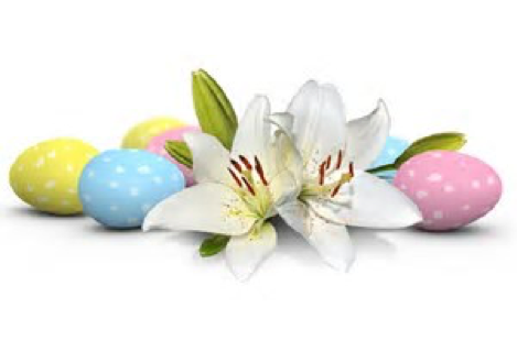 easter flower and eggs